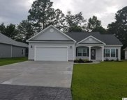 305 Basswood Court, Conway image