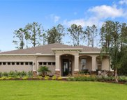 12206 Angel Mist Place, Riverview image