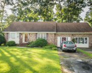 330 Red Fox Cir, Myrtle Beach image