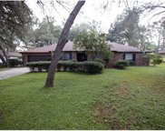 521 Burnt Tree Lane, Apopka image