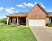 3029 Braewood Court, Leland image