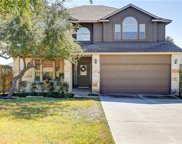 17609 Linkwood Dr, Dripping Springs image
