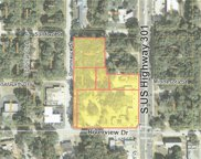 7853 Us 301 Highway S, Riverview image
