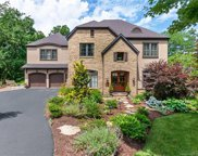 1011  Coves Pheasant Court, Biltmore Lake image