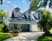 2120 Savannah Oaks Lane, Apopka image