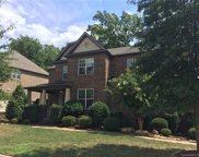 8921  Red Barone Place, Waxhaw image