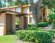 1816 Lake Cypress Drive, Safety Harbor image