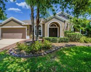 25607 Risen Star Drive, Wesley Chapel image