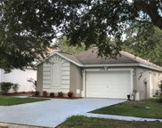 14957 Deer Meadow Drive, Lutz image
