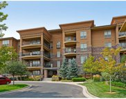 7865 Vallagio Lane Unit 303, Englewood image