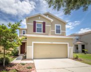 11052 Golden Silence Drive, Riverview image