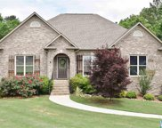 245 South Haven Cir, Odenville image