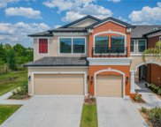 9106 Fox Sparrow Road, Tampa image