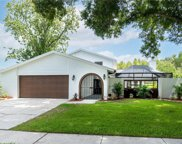 16505 Foothill Drive, Tampa image