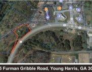 4015 Ferman Gribble Road, Young Harris image