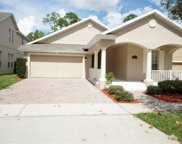 6569 Old Carriage Road, Winter Garden image