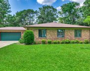 5389 Bear Bluff Drive, Conway image