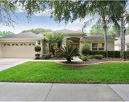 10136 Whisper Pointe Drive, Tampa image