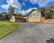 1569  American River Trail, Cool image