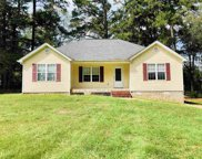 10195 Collins Chapel Rd, Thorsby image