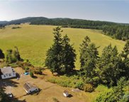 1418 Beaverton Valley Rd, Friday Harbor image