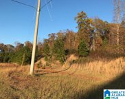 Maddox Farm Road Unit 57 Acres, Odenville image