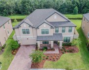 10311 Clover Pine Drive, Tampa image