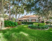 2875 Bridlewood Drive, Palm Harbor image