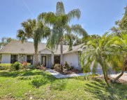 1415 Star Jasmine Lane, Brandon image