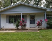 22 Black Alder Dr, Palm Coast image