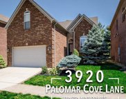 3920 Palomar Cove Lane, Lexington image
