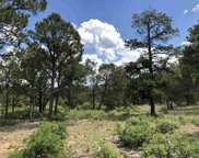 58 Silver Feather Trail Unit Lot 11, Pecos image