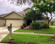 6607 Brighton Park Drive, Apollo Beach image
