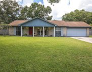 11410 Country Oaks Drive, Tampa image