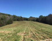 Hickerson Road, Wartrace image