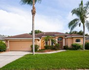 4524 Swift Circle, Valrico image
