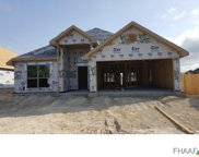 3502 Crystal Ann Drive, Temple image