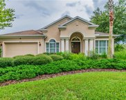 10438 Sky Flower Court, Land O' Lakes image