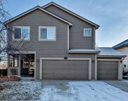 10416 Hollyhock Court, Highlands Ranch image
