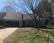 2421  Wooden Peg Court, Charlotte image