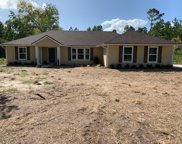 2584 HIBISCUS AVE, Middleburg image