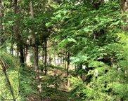6881 Pine Moss  Lane, Clover image