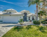 17710 Pineapple Palm CT, North Fort Myers image