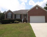 2311 Sunberry Drive, Graham image