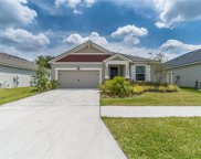 13019 Satin Lily Drive, Riverview image