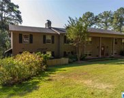 3017 Old Ivy Rd, Irondale image
