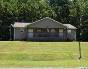 2264 Highway 79 North, Guntersville image