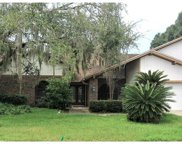 17922 Clear Lake Drive, Lutz image