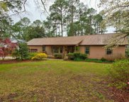 305 Cold Branch Drive, Columbia image