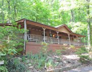 335 Tanglewood Lane, Scottsboro image